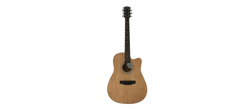 Giuliani GAG4100 Acoustic Guitar with FREE Bag