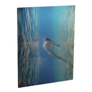 ChromaLuxe Clear Metal Prints - Gloss 8 x 10 Inches Sublimation Unisub