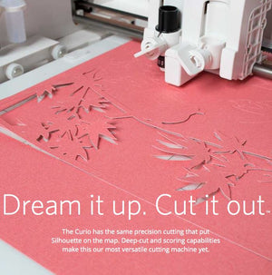USED Silhouette Curio Digital Crafting Machine - Swing Design