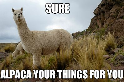Alpaca Your Things Meme