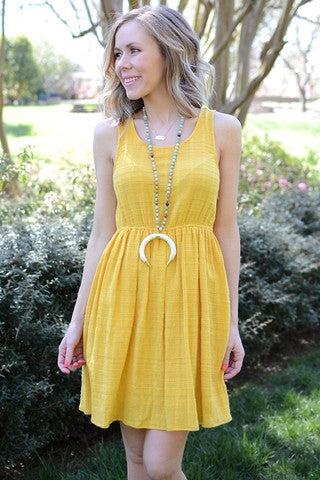 Goldie Fit and Flare Dress