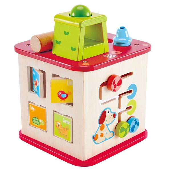 Hape Friendship Activity Cube , Hape Activity Cube, Hape Cube, Friendship Activity Cube, Friendship Cube, Activity Cube, Hape Friendship Cube