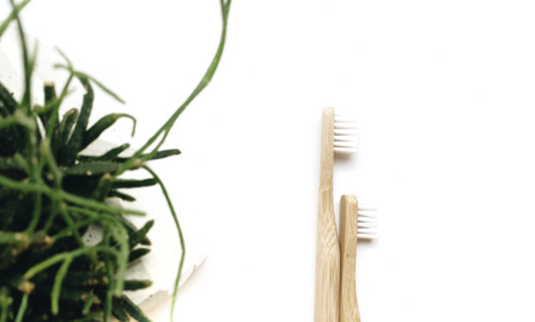 bamboo toothbrush green