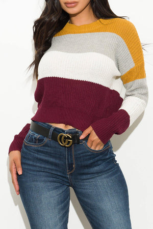 I Got What You Need Sweater Mustard/Gray/White/Burgundy