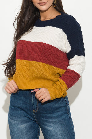I Got What You Need Sweater Navy/White/Rust/Mustard