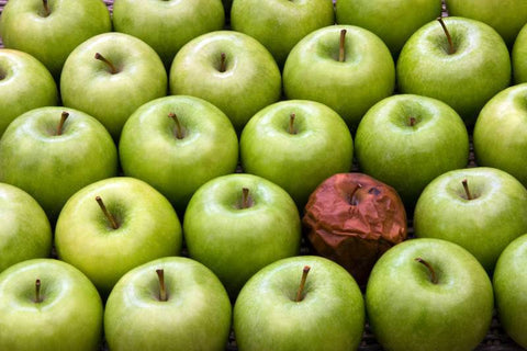 A Few Bad Apples - Outliers of Fleet Performance
