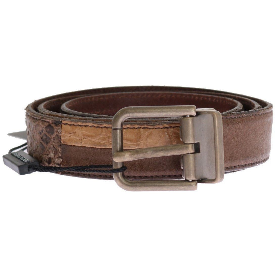 Brown Cayman Pyton Leather Belt Dolce & Gabbana
