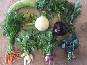 "Summer Solstice Farmbox - ""Family Box"" CSA Subscription"
