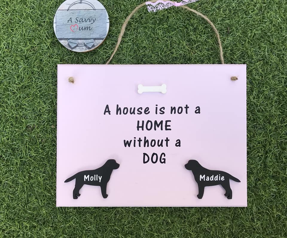A House Is Not a Home Without a Dog/Cat/Rabbit