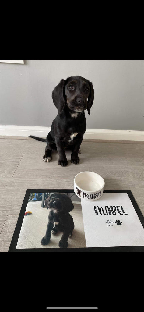 Personalised Pet Bowl and Mat Set