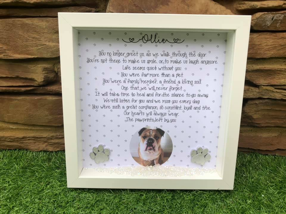 Pet Rememberance Frame