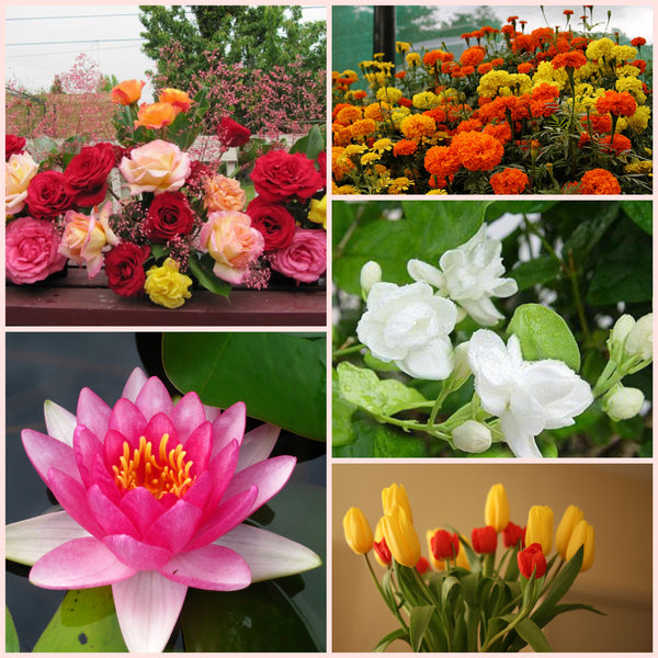 Flower Decoration Ideas For Your HomeMost Popular Flowers In