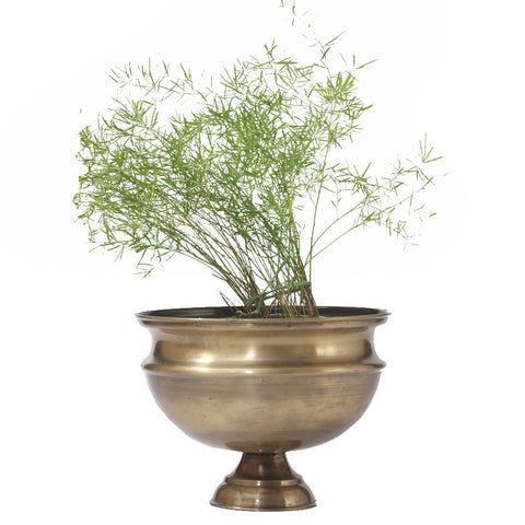 Antique Brass Finish Planter, Large - FOLKBRIDGE.COM | Buy Gifts. Indian Handicrafts. Home Decorations.