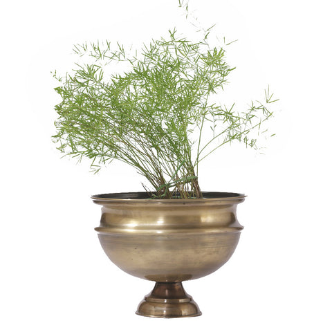 Antique Brass Finish Planter, Small - FOLKBRIDGE.COM | Buy Gifts. Indian Handicrafts. Home Decorations.