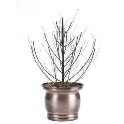 Copper Planter With Metal Branches  - FOLKBRIDGE.COM | Buy Gifts. Indian Handicrafts. Home Decorations.