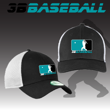 3B Baseball New Era Stretch Fit Cap