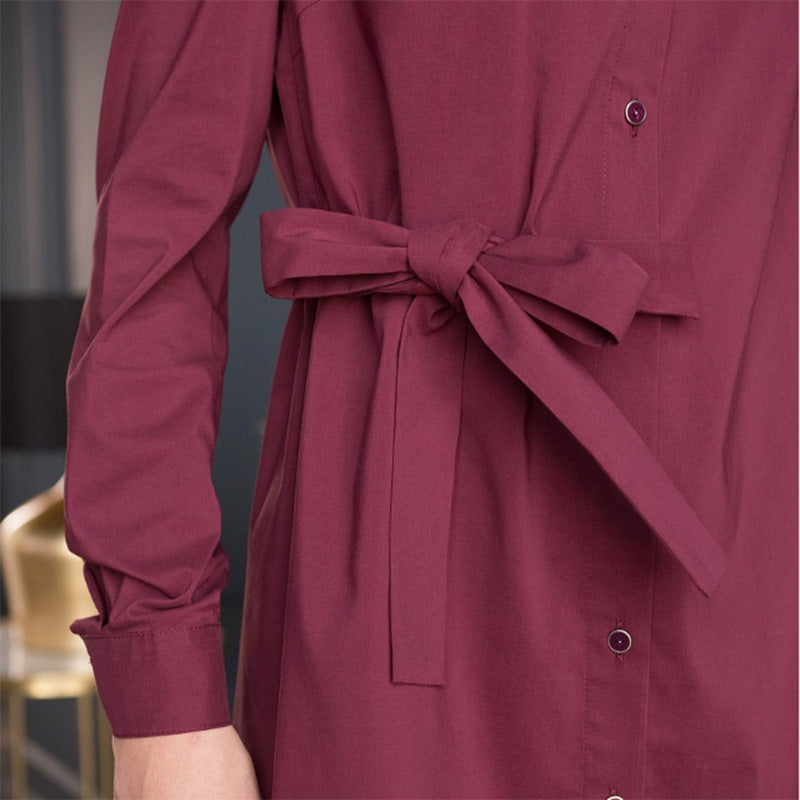 Women Vintage Sashes Front Button A-line Party Dress Long Sleeve Turn Down Collar Solid Elegant Dress Spring Fashion Dress