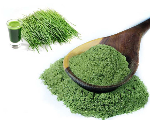 Young Barley Grass Powder