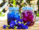 Butterfly Pea Flower
