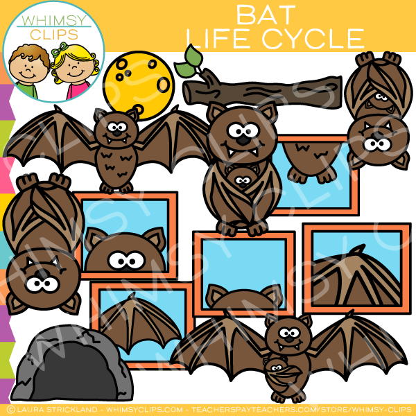 Life Cycle of a Bat Clip Art