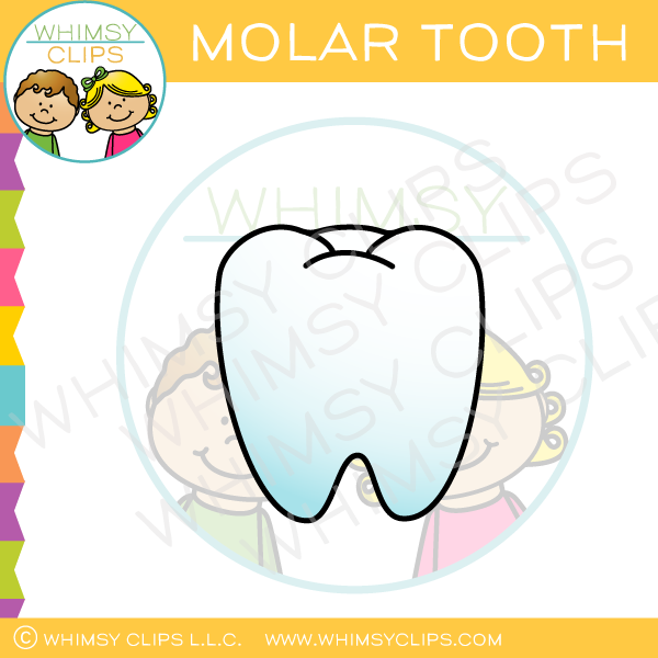 Molar Tooth Clip Art