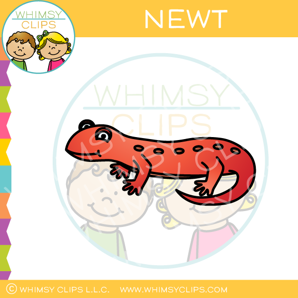 Newt Clip Art , Images & Illustrations | Whimsy Clips