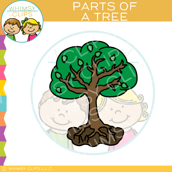 Parts of a Tree Clip Art
