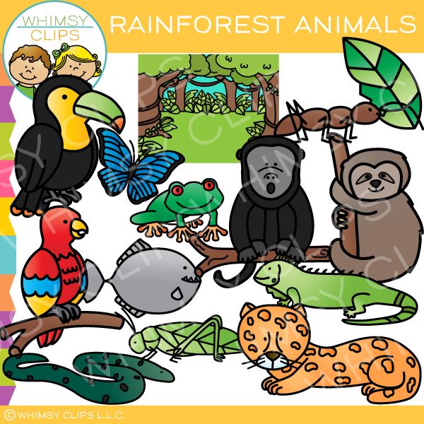 Colorful Rainforest Animals Clip Art
