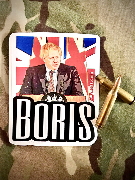 Ally Boris sticker