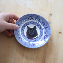 Load image into Gallery viewer, Personalised Hand Painted Pet Portrait vintage saucer