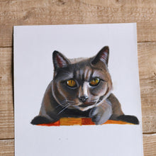 Load image into Gallery viewer, Acrylic Pet portrait
