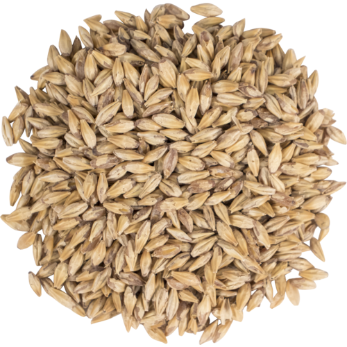 Carapils Malt - 1 LB