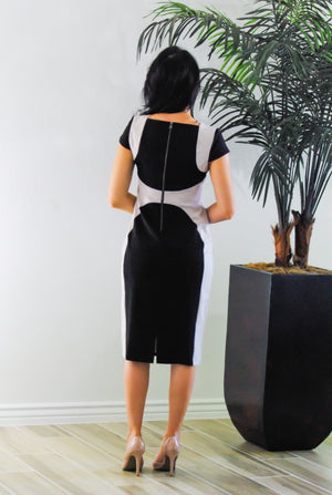 Delaney Pencil Dress