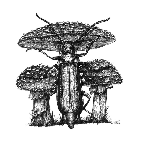 "Unframed 6"" Spanish Fly Beetle & Fly Agarics"