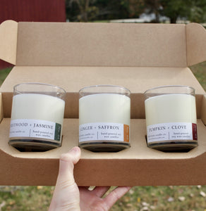 Fall Fragrance Bundle - Wildrootscandle