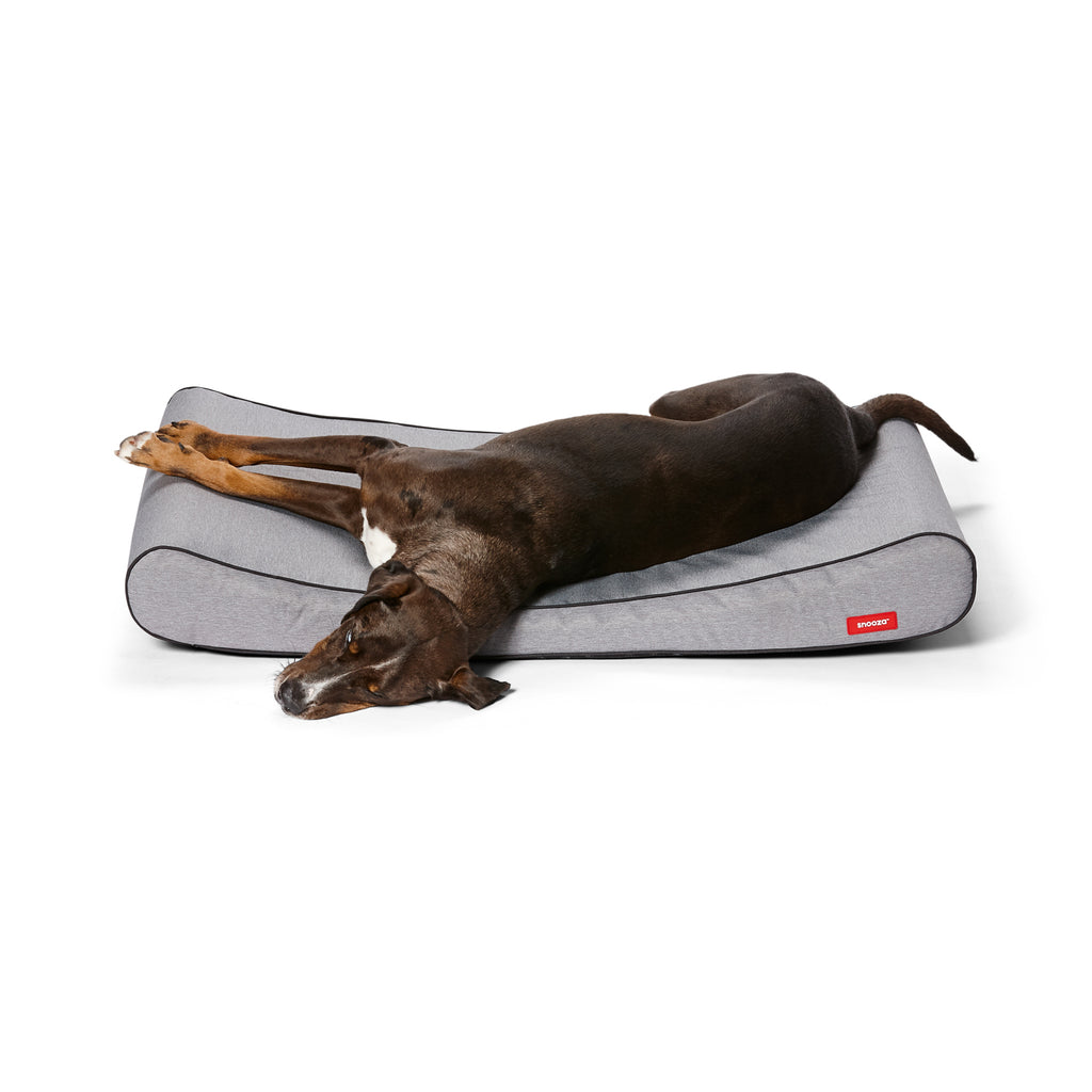 Ortho Lounger Grey Snooza Pet Products
