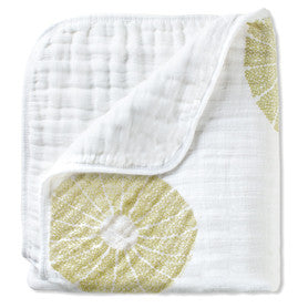Aden & Anais Organic Dream Blanket