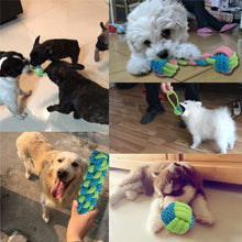 Load image into Gallery viewer, Puppy Chew Teething Toys