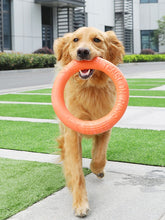 Load image into Gallery viewer, Flying Discs Pet Training Ring
