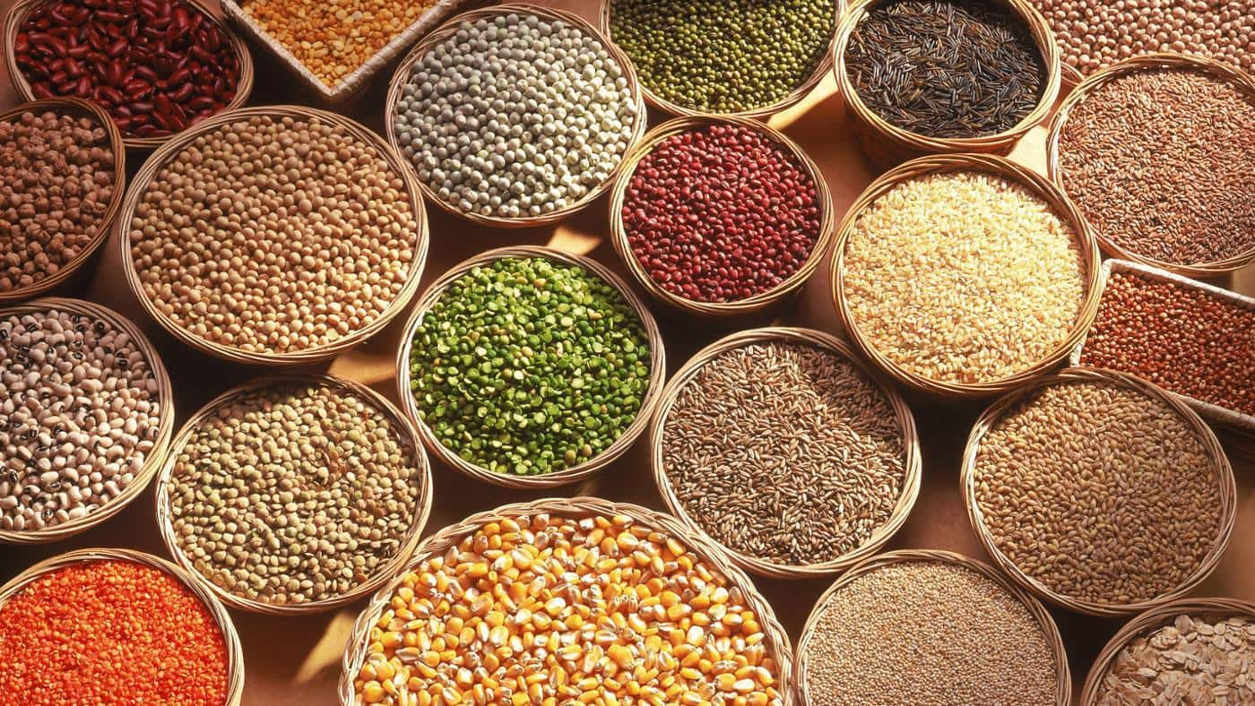 BENEFITS OF ORGANIC PULSES