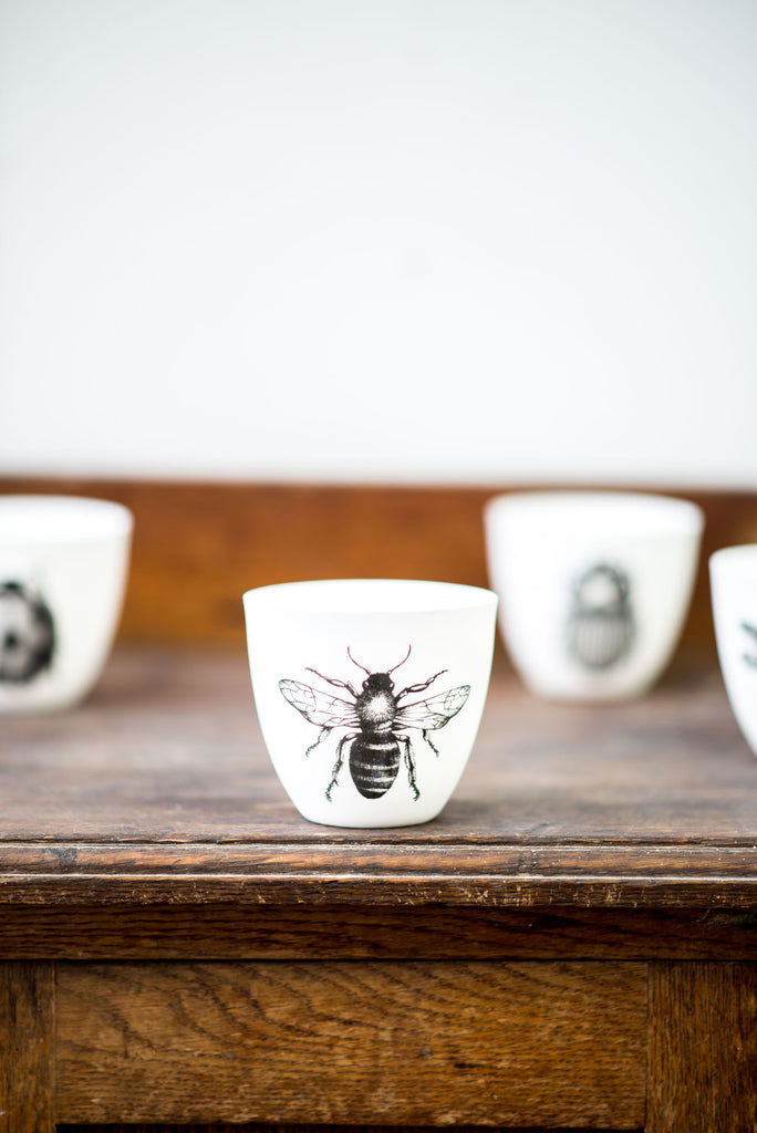INSECT TEA-LIGHT SET