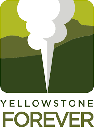 Yellowstone Forever non-profit organization  to help wildlife in Yellowstone National Park
