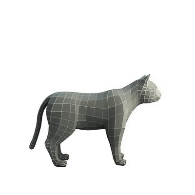 Character - Base Mesh Cat