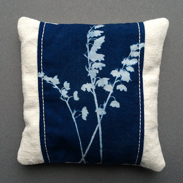 cyanotype FO14 Lily front
