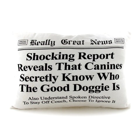 Doggie Pillow - Really Great News