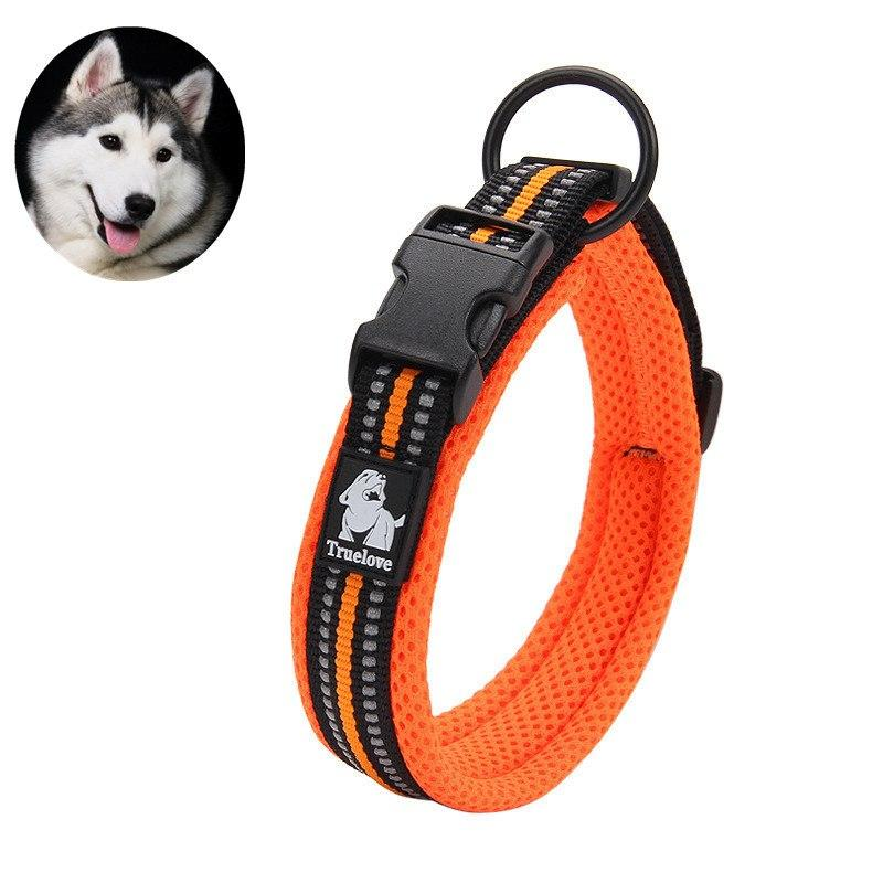 Padded Reflective Safety Collar