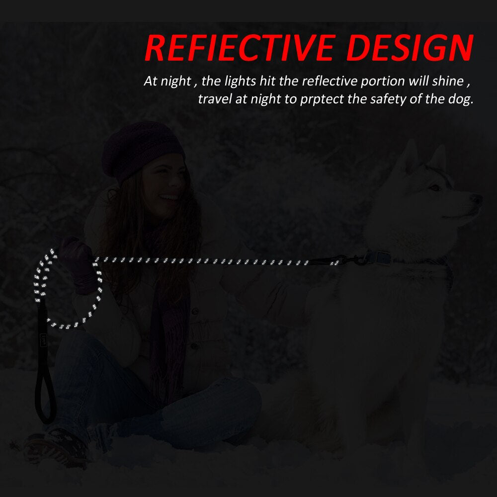 6ft Nylon Dog  Reflective Leash