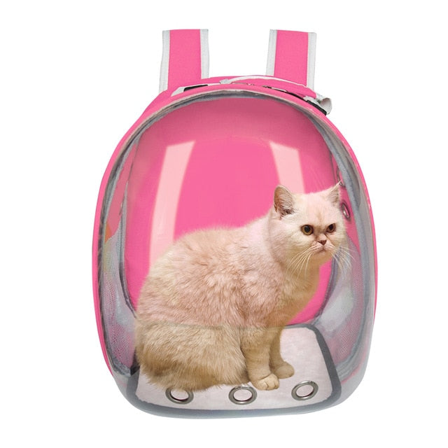 Bubble Bag - Cat Carrier