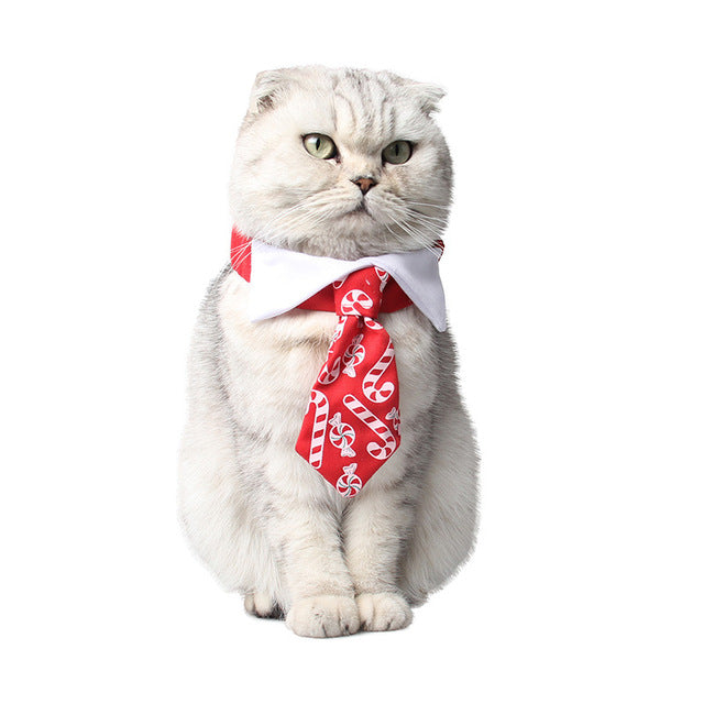 Christmas Pet Tie