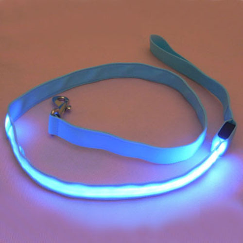 LED Safety Leash
